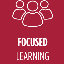 Focused Learning