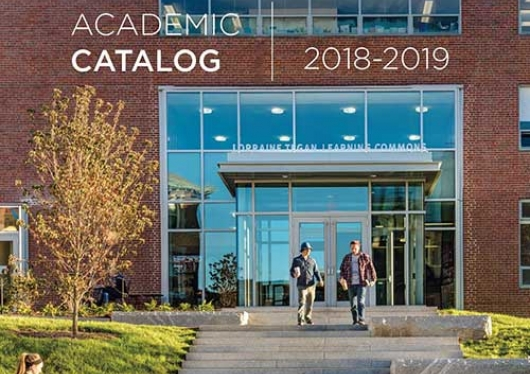 2018-2019 Academic Catalog cover