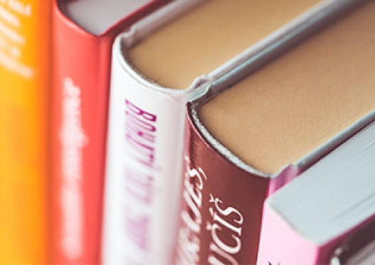 A close-up photo of library books on a shelf