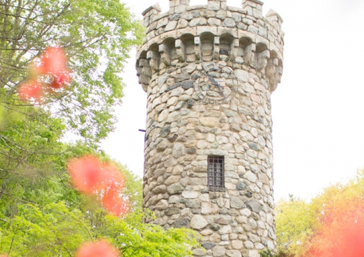 Regis College Tower with spring flowers in the foreground