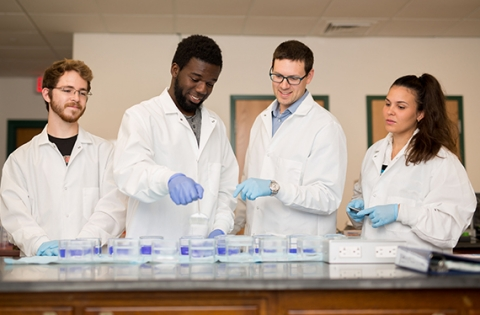 Regis students work in one of the labs on the Weston campus