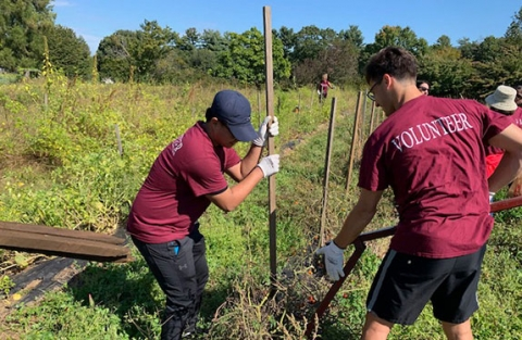 Regis students work hard at Land's Sake